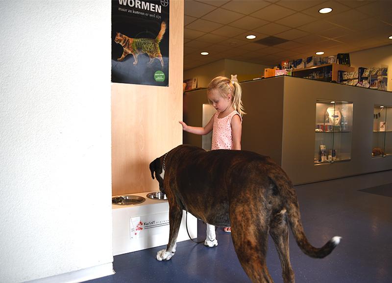 algemene_gezondheid_dierenkliniek